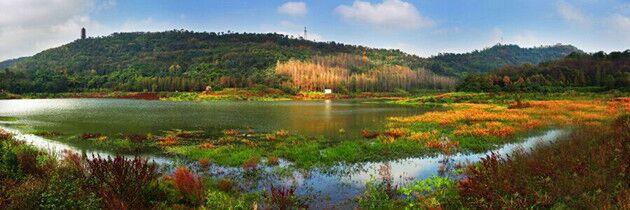 重庆风景图片大全自然