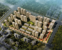 南飞鸿·十年城