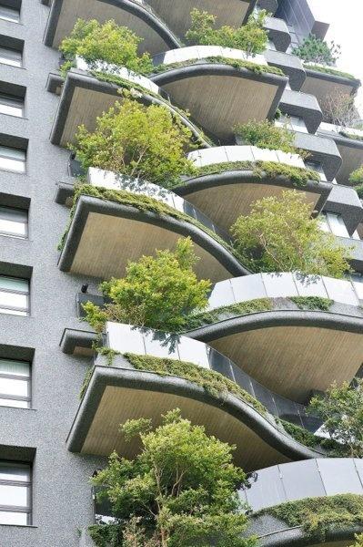 亚洲第一栋高楼阳台种大树 会呼吸的绿建筑