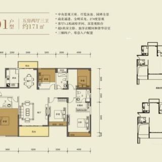 3栋01户型-171平五房两厅三卫171