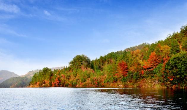铜梁区双碾林场 位于铜梁区南部,面积3112公顷,森林覆盖率84.
