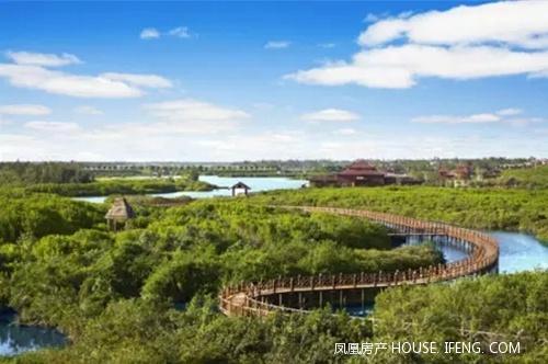 海南红树林湿地保护公园
