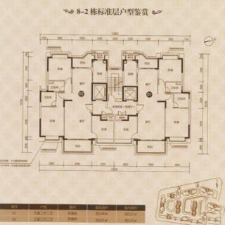 8-2栋标准平层图