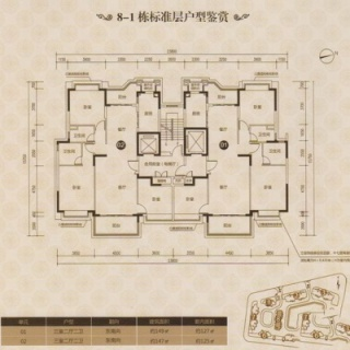 8-1栋标准平层图