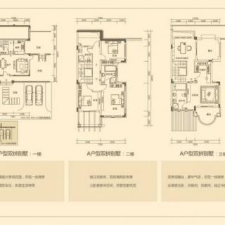 别墅A户型图