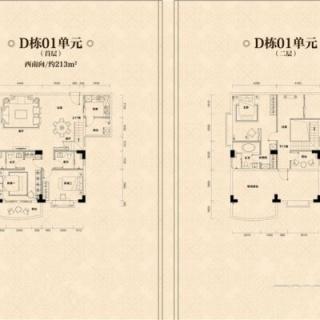 D栋01单元户型图
