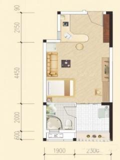 多层一房户型2