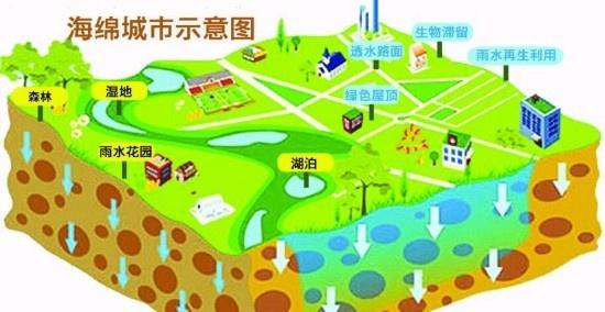 而单位和居住区现有绿地也要按海绵城市标准进行改造