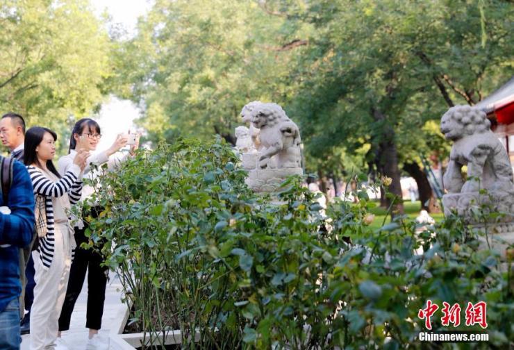 故宫国庆节前夕开放新区 神秘冰窖将开放 - 子泳 - 子泳WZ的博客