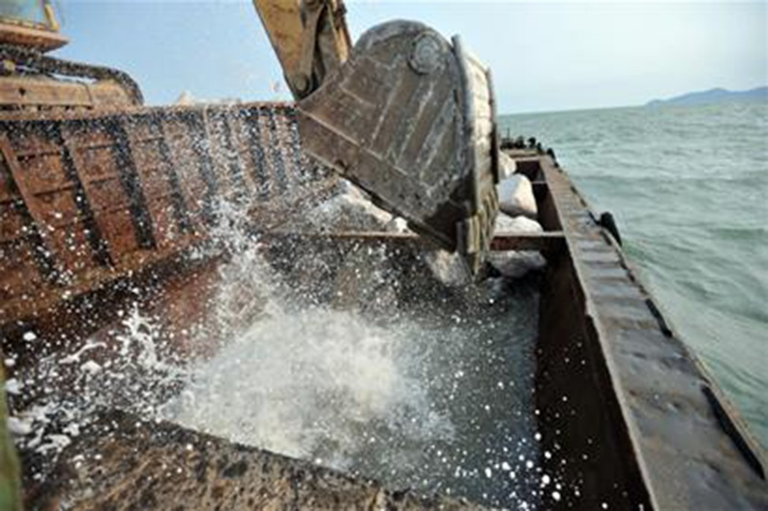 新型混凝土结构体系,海洋环境混凝土耐久性监测与修复等方面开展研究