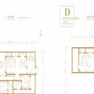 别墅D户型