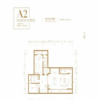 别墅A2户型