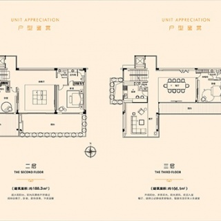E型别墅户型图