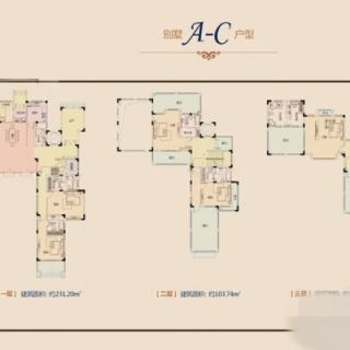 别墅A-C户型