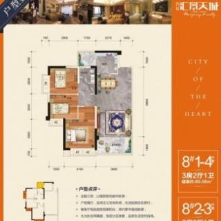 8#1-4/2-3户型/三房两厅一卫