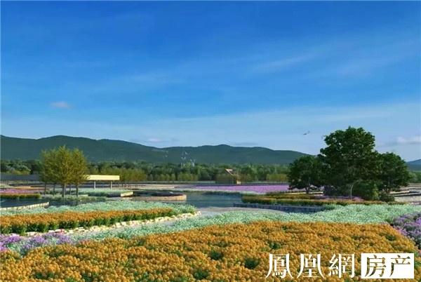 """三亚天使净心谷获""""全国森林康养基地试点建设单位""""称号"""
