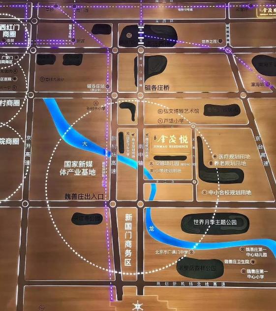 大兴金茂悦规划图2