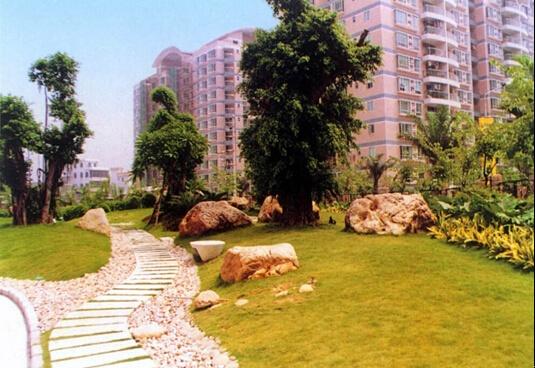 綠化過渡區主要起到鏈接整個場地的作用